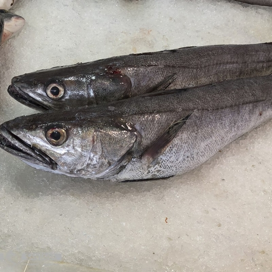 comprar-merluza-pescaderia-online